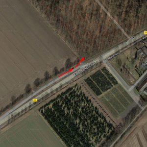 B206 Hohenlockstedt beim Geflügelhof