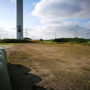 Windpark Bockhorn