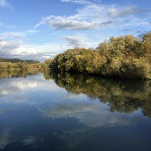 Hirschauer See