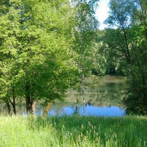 Stausee Winterbach